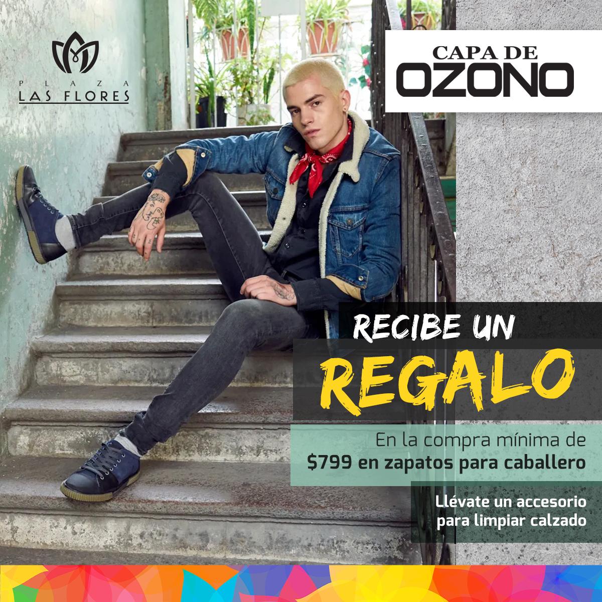 LasFlores-Ofertas-CapaOzonoCaballero copy