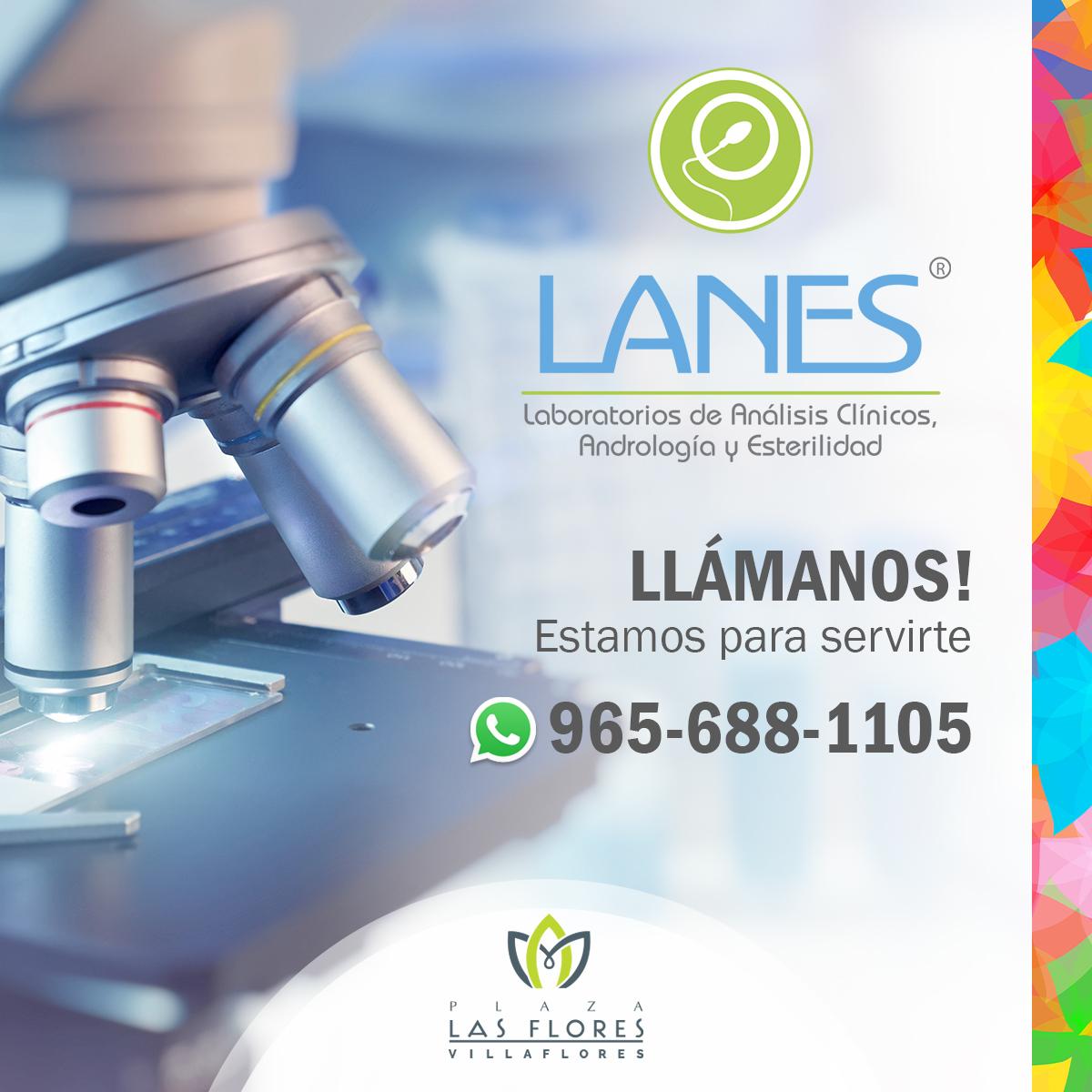 LasFlores-Telefonos-Lanes copy