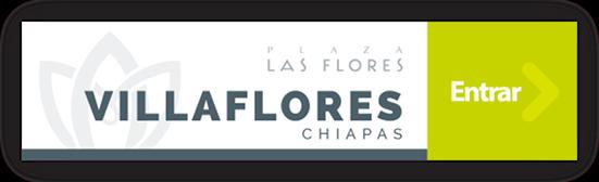 Plaza Las Flores Villaflores